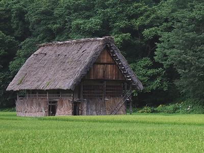 tamahome-hiraya
