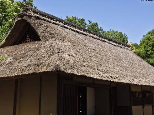 平屋建ては贅沢なのか?平屋の坪単価が高い理由。