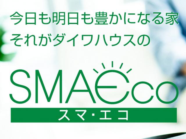daiwa-smaeco